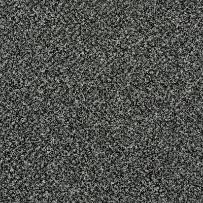 Shaw Floors Because We Can I 15′ Smokey Shimmer 00502_E9258