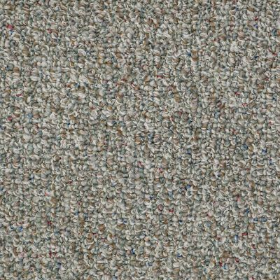 Shaw Floors Value Collections Pure Waters 12′ Net Secret Garden 00301_E9279