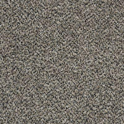 Shaw Floors Because We Can III 15′ Birch Tree 00103_E9288