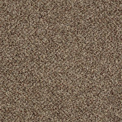 Shaw Floors Simply The Best Because We Can III 15′ Worn Path 00700_E9288
