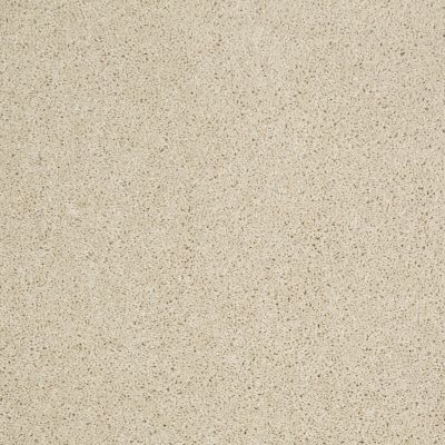 Shaw Floors Origins II Linen 00101_E9301