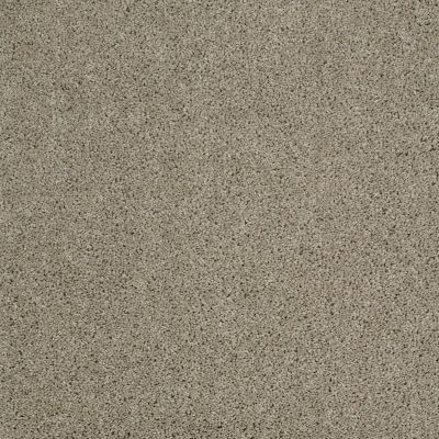 Shaw Floors Origins II Gray Flannel 00511_E9301