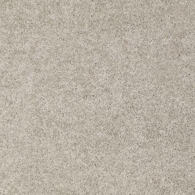 Shaw Floors Origins II Silver Shadow 00563_E9301