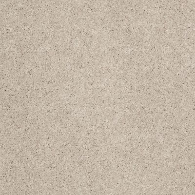 Shaw Floors Origins II Fossil 00564_E9301