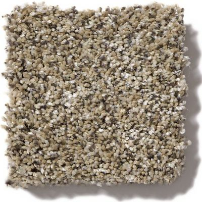 Shaw Floors Value Collections Because We Can I 15′ Net Sea Shell 00100_E9313