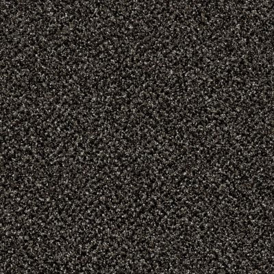 Shaw Floors Value Collections Because We Can I 15′ Net Iron Age 00503_E9313
