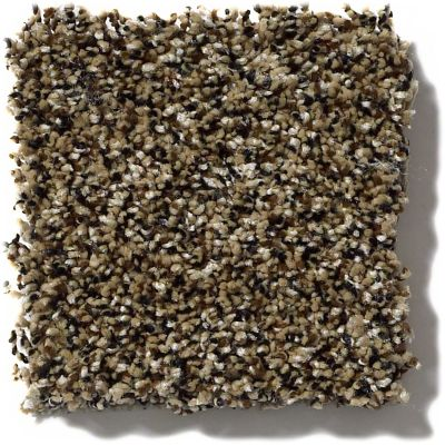 Shaw Floors Value Collections Because We Can III 15′ Net Sandpiper 00201_E9317