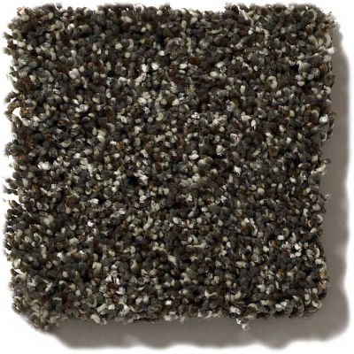 Shaw Floors Value Collections Because We Can III 15′ Net River Rock 00702_E9317