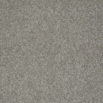 Shaw Floors Value Collections Gold Texture Net London 00535_E9325