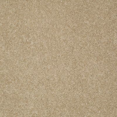 Shaw Floors Value Collections Platinum Texture 12′ Net Beach House 00771_E9326