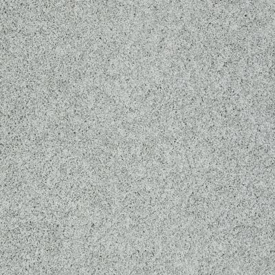 Shaw Floors Value Collections Gold Twist Net Fossil 00541_E9329