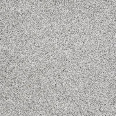 Shaw Floors Value Collections Gold Texture Tonal Net Glacier Caves Texture 00590_E9332