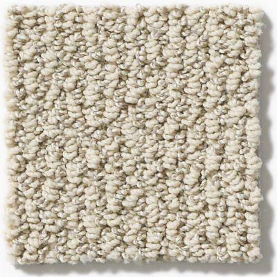 Shaw Floors Vibrant Powder 00100_E9345