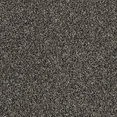 Shaw Floors Simply The Best Work The Color Meteorite 00501_E9346