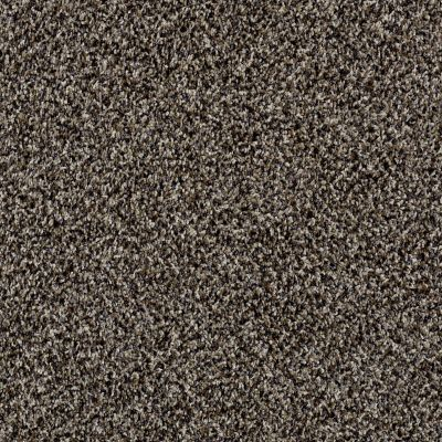 Shaw Floors Simply The Best Hypnotic Oxford 00700_E9347