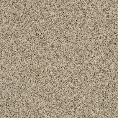 Shaw Floors Simply The Best Frosting Colonial Cream 00102_E9350