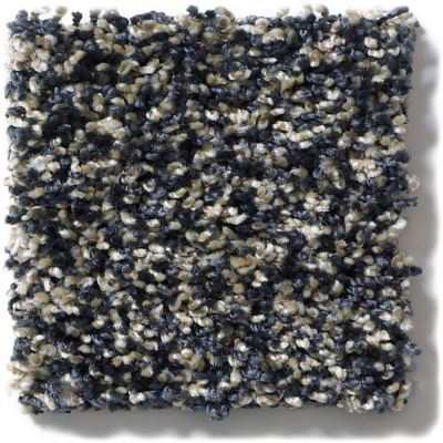 Shaw Floors Simply The Best Frosting Indigo Mood 00400_E9350