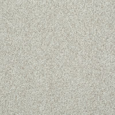Shaw Floors Wild Extract Porcelain 00101_E9351