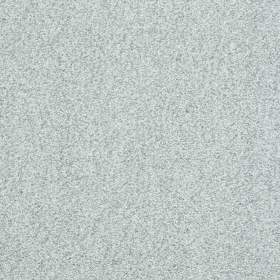 Shaw Floors Simply The Best Wild Extract Silver Glitz 00500_E9351