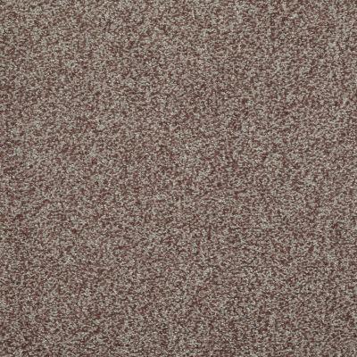 Shaw Floors Wild Extract Pecan 00701_E9351