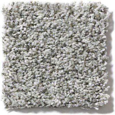 Shaw Floors Foundations Blending Upwards Smoked Pearl 00520_E9356