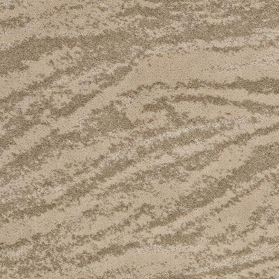 Shaw Floors Foundations Cosmos Raffia 00104_E9357
