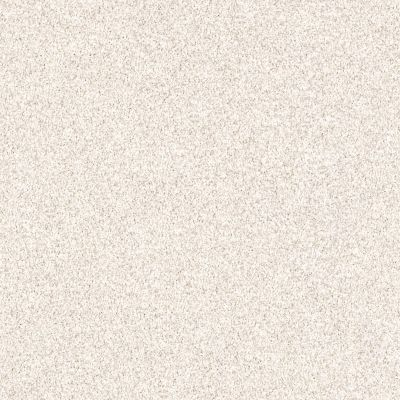 Shaw Floors Palette Stucco 00100_E9359