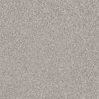 Shaw Floors Foundations Palette Opal Gray 00500_E9359