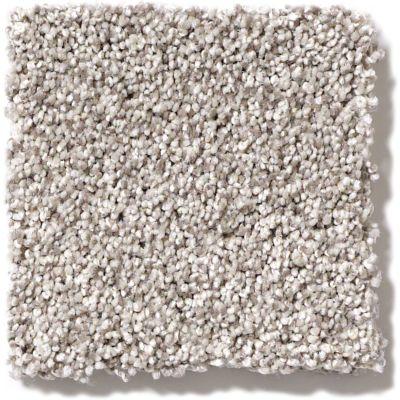 Shaw Floors Foundations Palette Silver Charm 00501_E9359