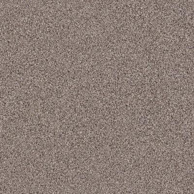 Shaw Floors Foundations Palette River Bank 00700_E9359