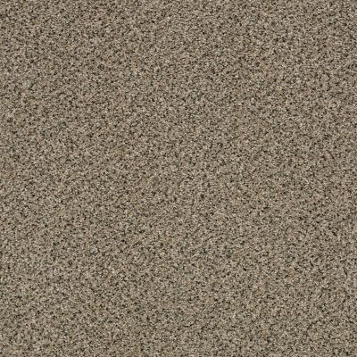 Shaw Floors Foundations Effervescent Raffia 00104_E9366
