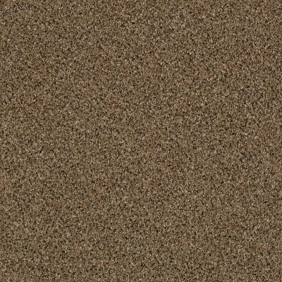 Shaw Floors Foundations Effervescent Scarecrow 00200_E9366