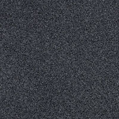 Shaw Floors Foundations Effervescent Mystic 00400_E9366