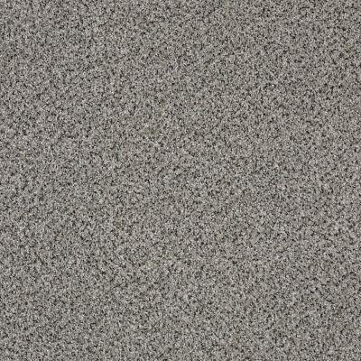 Shaw Floors Foundations Effervescent Winter Wind 00500_E9366