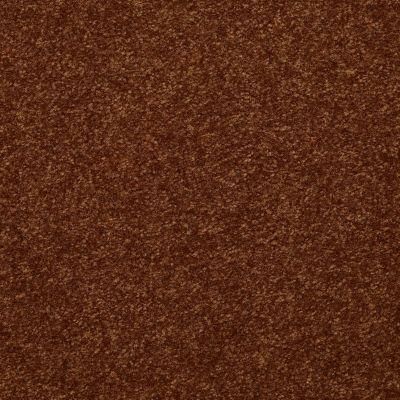 Shaw Floors Value Collections Passageway 3 Net Gingerbread 00602_E9377