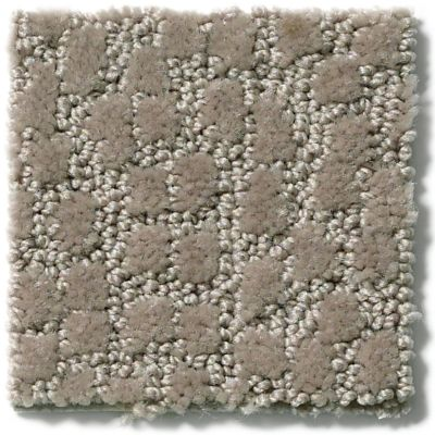 Shaw Floors Simply The Best Lattice Bronze 00761_E9415