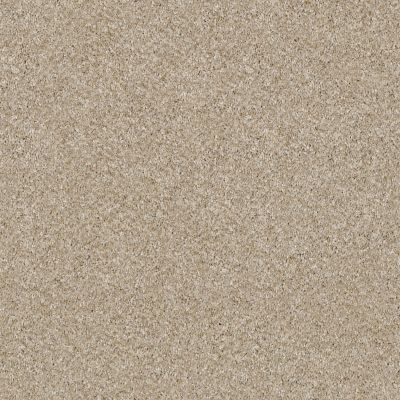 Shaw Floors Simply The Best Of Course We Can II 12′ Linen 00100_E9423