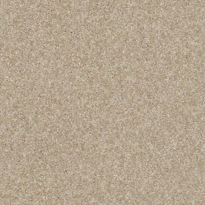 Shaw Floors Simply The Best Of Course We Can II 12′ Sepia 00105_E9423