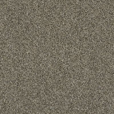 Shaw Floors Of Course We Can II 12′ Dynamic 00500_E9423