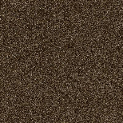 Shaw Floors Of Course We Can II 12′ Sedona 00702_E9423