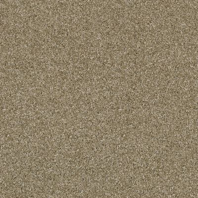 Shaw Floors Simply The Best Of Course We Can II 15′ Biscotti 00102_E9424