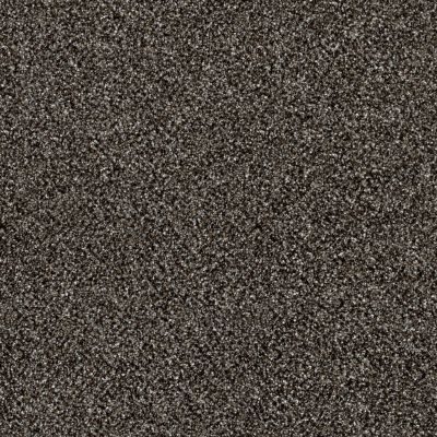 Shaw Floors Simply The Best Of Course We Can III 12′ Boulder 00504_E9425