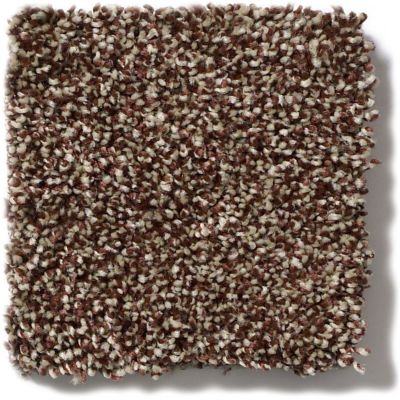 Shaw Floors Simply The Best Of Course We Can III 12′ Ocher 00600_E9425