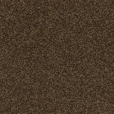 Shaw Floors Simply The Best Of Course We Can III 15′ Sedona 00702_E9426