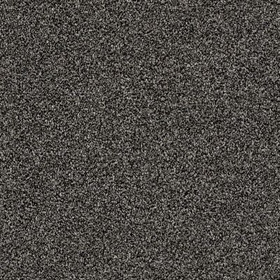 Shaw Floors Value Collections Of Course We Can II 12′ Net Soot 00503_E9435