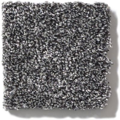 Shaw Floors Value Collections Of Course We Can III 12′ Net Shadow 00502_E9441