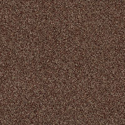 Shaw Floors Value Collections Of Course We Can III 12′ Net Ocher 00600_E9441