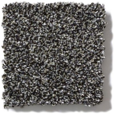 Shaw Floors Value Collections Of Course We Can III 15′ Net Soot 00503_E9444