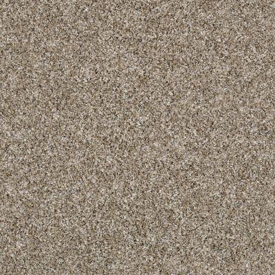 Shaw Floors Shake It Up (a) Weathered 00101_E9446