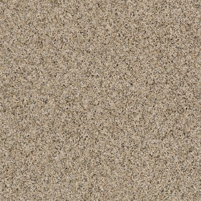 Shaw Floors Value Collections Frosting Net Salty Butter 00200_E9460
